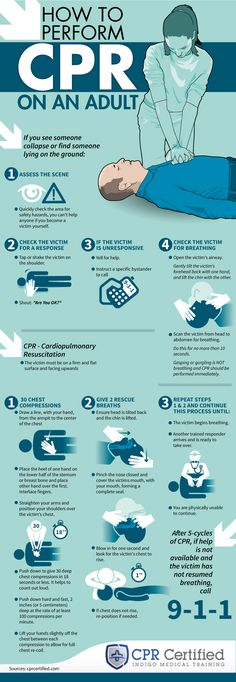 How to Perform CPR on an Adult - CPRCertified.com - Infographic