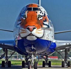 Russian Airlines: Help the Siberian Tiger Commercial Plane, Commercial Aircraft, Civil Aviation, Aviation Art, Avion Jet, Jet Privé, Aircraft Painting, Airplane Art, Boeing 747
