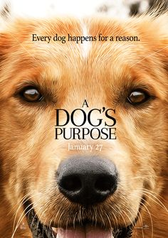 A Dog's Purpose Movie Trailer. Movie releases Jan 27,2017 based on the book by…