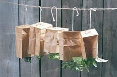 Air Drying | How To Dry Herbs Straight From Your Garden | Garden Season Tips