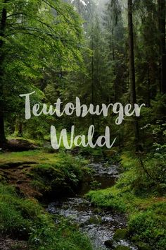 Discover the Teutoburg Forest - 3 special destinations - Sophia's world - Travel Destination Beauty, Places To Travel, Travel Destinations, Diy Beauty Secrets, Business Travel, In The Heights, Beautiful Places, Road Trip, Germany