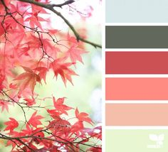 today's inspiration image for { autumn hues } is by . thank you, Zoe, for another incredible photo share! Design Seeds, Colour Pallette, Colour Schemes, Color Combos, Color Harmony, Color Balance, Color Palette Challenge, Color Swatches, Grafik Design