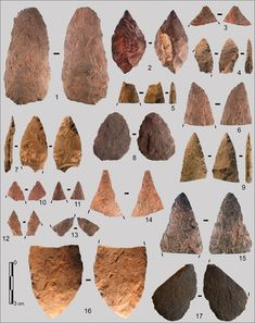 Technological & typological analysis of the stone artifact assemblages from Sibudu & Blombos Caves shows their diversity and discusses to what extent they can be grouped into homogeneous lithic sets.