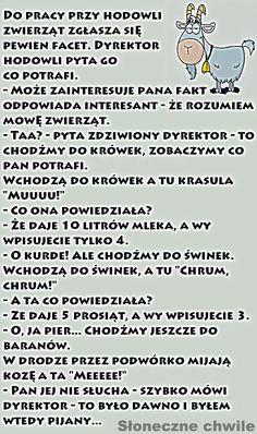 30 najlepszych kawałów na poprawę humoru – Demotywatory.pl Good Mood, Sherlock, Playboy, Jokes, Lol, Hairstyles, Random, Funny, Humor