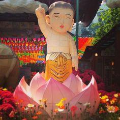 "@Graham Budd's photo: ""The man himself, Buddha. #lantern #festival #seoul #buddhist #Insadong. #light #visitkorea #korea #한국 #twitter"""