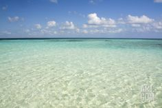 Clear Water View of the Caribbean Sea, Goff Caye, Belize Photographic Print by Cindy Miller Hopkins at Art.com