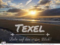 Urlaub auf Texel mit Kind und Hund - Es war Liebe auf den ersten Blick <3