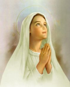 Maria - Immaculate Conception ( my favorite picture) Virgen Medjugorje, Blessed Mother Mary, Divine Mother, Blessed Virgin Mary, Immaculate Conception, Madonna, Santos, Santa Maria, Mother Mary Images