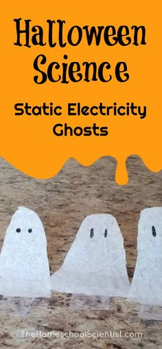 Halloween Science: Static Electricity Ghosts – The Homeschool Scientist - Kids halloween Halloween Science, Halloween Activities For Kids, Halloween Books, Halloween Projects, Halloween Kids, Halloween Themes, Halloween Party, Halloween Worksheets, Preschool Halloween