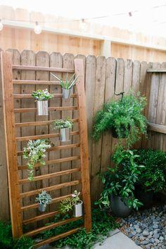 Simple DIY succulent wall accent | sugarandcloth.com