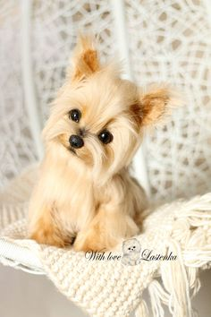 Yorkie Precious Portrait Artist dog mohair collectible toy