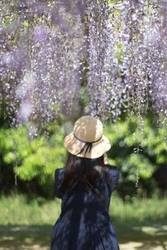 under the wisteria | candid photography #moments