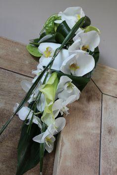 Orchidée, retombant