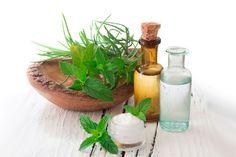 ***El uso de los cosméticos naturales*** Los cosméticos se han utilizado a lo largo de la historia, y en la actualidad, se acrecienta la tendencia a utilizar productos naturales, tal como ocurría hace siglos....SIGUE LEYENDO EN..... http://comohacerpara.com/el-uso-de-los-cosmeticos-naturales_7379b.html