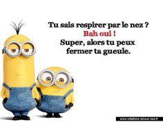 quelle répartie :) Plus Lol, Minion Humour, Funny Minion, Rage, Memes, Quote Citation, Image Fun, French Quotes, Minions Quotes