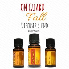 """Ask me how to keep your family """"OnGuard"""" this cold and flu season! https://www.mydoterra.com/valeriesnodgrass/#/"""