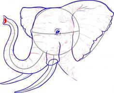 how to draw a realistic elephant step 6