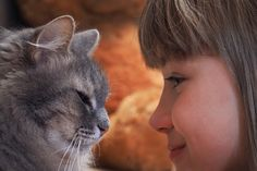 Children's beliefs about animal welfare and sentience are linked to their own experiences with animals.