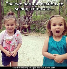 Two natural reactions