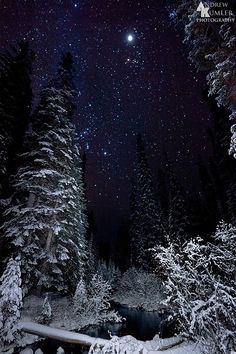 Starry Winter's Night: this picture shows the sky at night which makes it easier for me if I wanted to know the shade of blue of the sky. It also shows how stars are arranged and the distance between them. I Love Winter, Winter Night, Winter Snow, Winter Blue, Winter Magic, Winter's Tale, Winter Beauty, To Infinity And Beyond, Winter Solstice