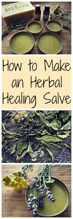 How to Make an Herbal Salve~ With healing herbs you can find in your yard! How to Make an Herbal Salve~ With healing herbs you can find in your yard! Healing Herbs, Medicinal Plants, Natural Healing, Healing Prayer, Healing Scriptures, Natural Oils, Herbal Remedies, Health Remedies, Home Remedies