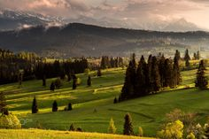 Evenings light on the meadow - Evening light after rain in national park Pieniny...  Follow me on FACEBOOK or INSTAGRAM