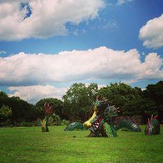 A dragon in the garden. JC Raulston Arboretum. Raleigh, NC. Photo by jsoplop