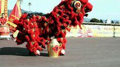 Golden Gate Fields KTSF26 1st annual lion dance competition rising phoen...
