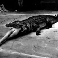 Helmut Newton - German-Australian photographer, fashion photographer known for his provocative, erotically charged black-and-white photos. Helmut Newton photos.