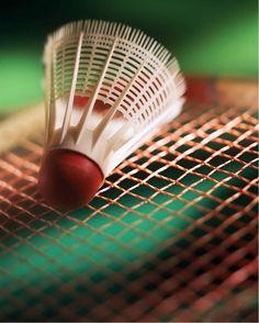 Le Badminton : petit jumeau du tennis, avec une raquette toute légère, on frappait dans le volant en plastique pour l'envoyer à son partenaire.
