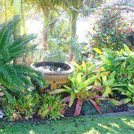 34 best Bali Garden ideas images on Pinterest | Tropical gardens ...