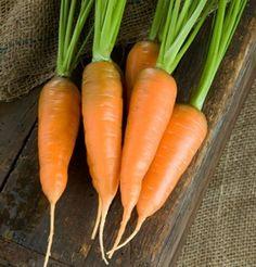 Carrot Danvers DGS30010A (Orange) 200 Organic Heirloom Seeds by David's Garden Seeds David's Garden Seeds http://www.amazon.com/dp/B00EMKUGC6/ref=cm_sw_r_pi_dp_C31lub1F7VCBJ