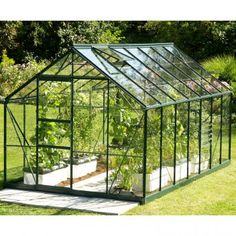 Neptune W x D Greenhouse WFX Utility Colour: Green, Glazing: Horticultural Glass Heating A Greenhouse, Polycarbonate Greenhouse, Mini Greenhouse, Green Factory, Serre Polycarbonate, Greenhouse Pictures, Serre Tunnel, Mini Serre