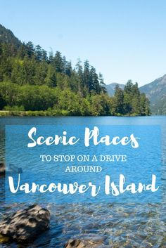 Vancouver Island in Canada is the perfect place to go on a road trip any time of the year. Here are some of the most scenic places to stop! Travel Usa, Columbia Travel, British Columbia, Travel Tips, Travel Stuff, Travel Ideas, Vancouver Island, Columbia Outdoor, Road Trip Hacks