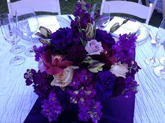 Beautiful purple flowers done by Petal