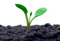 Sermão sobre Autoestima - Crescimento Espiritual e Autoestima
