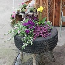 Up cycled Tire Planter#/1327861/up-cycled-tire-planter?&_suid=13666806324120315442623903916