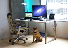 My Desk 2013