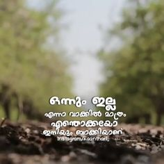 Song Status, Status Quotes, Thug Quotes, Life Quotes, Love Status Whatsapp, Malayalam Quotes, Cute Baby Pictures, Good Morning Quotes, Kerala