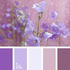 Risultati immagini per pink and purple color palette Purple Color Palettes, Pastel Palette, Colour Pallette, Colour Schemes, Color Combos, Color Balance, Design Seeds, Colour Board, Color Stories