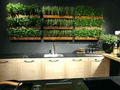 Image result for wall herb garden with lights