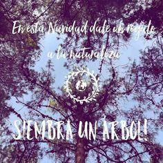 Devuelve algo a la tierra, nuestro hogar que todo nos da 🌲🌎❤ Recicla, reusa y reutiliza ♻ . . . .  #compracolombiano #diseñoindependiente #compralocal #mochilas #bags #style #fashion #lifestyle #Medellín #conceptstore #hechoencolombia #style #womenfashion #picoftheday #ethicalfashion #ethicalclothing #ethicaldesign #animalfriendly #ethicaldesign #yocomprocolombiano💯✔️