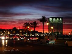 Tangier Morocco, Marina Bay Sands, Night, Travel, Viajes, Destinations, Traveling, Trips