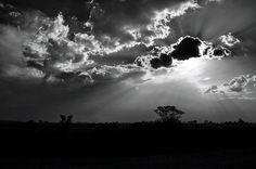 Reposting @i.am.the.seeker: Signs of rain? . . . #sun #sunlight #light #landscapes #landscape #dayshots #horizon #sunset #prilaga #sky #beautiful #dusk #nature #bright #warm #cloudy #prilaga #spring #clouds #cloud #springtime #nature #rain #sunny #blackandwhitephoto #bw #bnw #blackandwhite #instablackandwhite #blackandwhitephotography