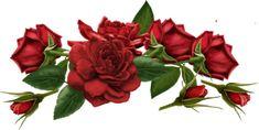 cliparts fleurs