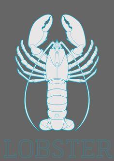 Marine species by Artnefer , via Behance  #JoesCrabShack