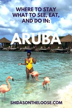 Aruba: The Best and Surprising Worst of One Happy Island | 7-day Itinerary for Aruba. Where to stay in Aruba I What to do in Aruba | Where to eat In Aruba | Caribbean | Aruba | ABC Islands | Oranjestad,  Aruba | Oranjestad