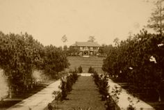 The Mansion House, Baguio City. c1930s. - simoun (google archives) Philippines Culture, Manila Philippines, Baguio City, Mansions Homes, Pinoy, Vintage Pictures, Old World, Old Photos, Cities