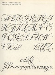 Image result for flourished copperplate calligraphy alphabet