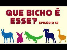 Canal Infantil ZooMoo: Série - Que bicho é esse? - Episódio 12